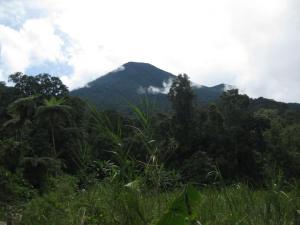 pangrangau mount